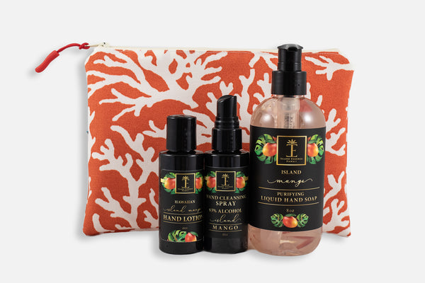 Antibacterial Liquid Hand Soap Trio in Oneloa Bag
