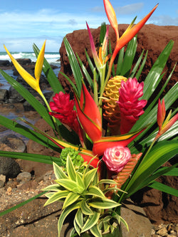 Maui's Finest Flowers Tropical Paradise Collection