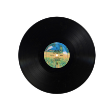 "Load image into Gallery viewer, ""All the Ways We Are Together"" DOUBLE LP"