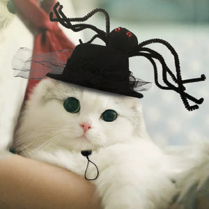 Halloween  Dog Cat  Costume  Spider Hat for Dog and Cats