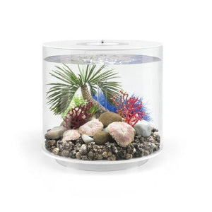 biOrb palm tree seychelles-Palmetræ ornament small, står dekoreret i en biOrb TUBE 15 L. 72679