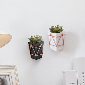 Plant Pot Wall-Mounted in Modern Design - Happiness Hustle Store