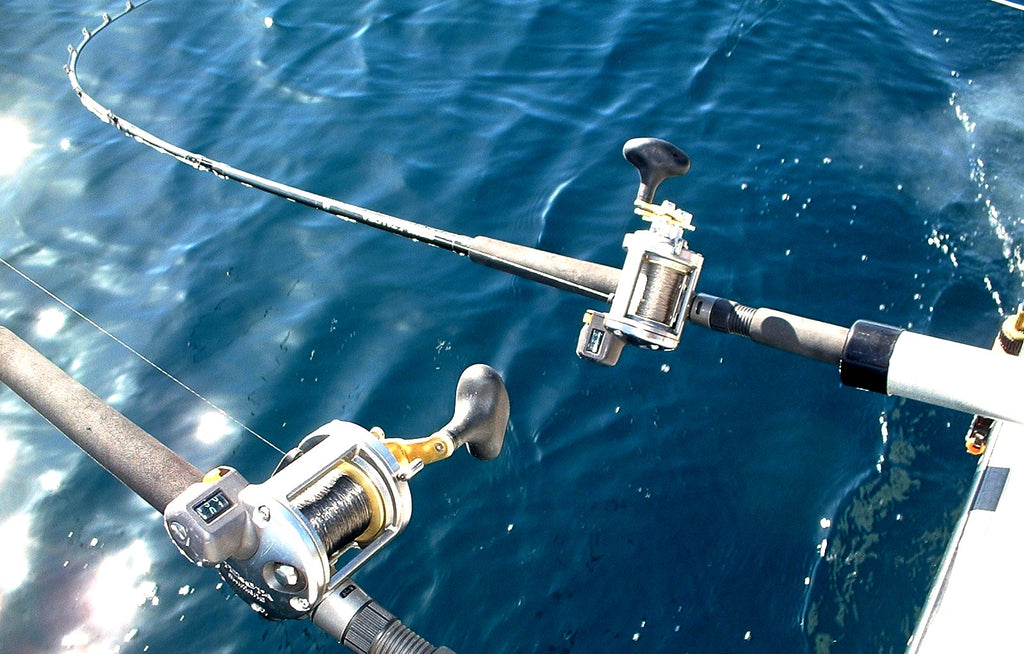 Double Duty Diver Reels by Capt. Mike Schoonveld
