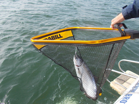Toyotas, Trolling Plates, Landing Nets and Revelators | Tackle & Toys by Capt. Mike