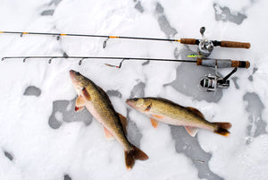 Saginaw Walleye Ice Fishing by Bob Gwizdz