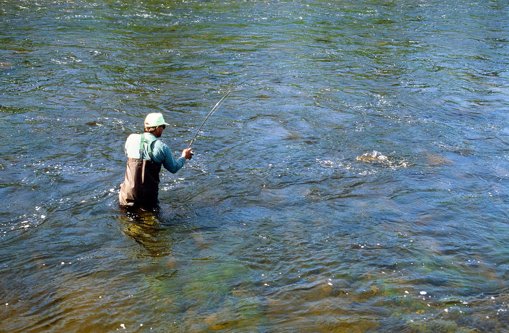 fish fishing fly trout stream creek river
