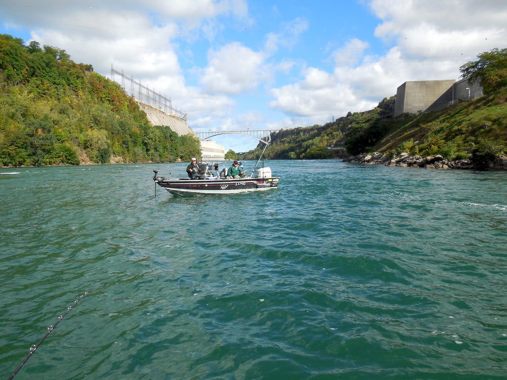 niagara river fishing steelhead salmon walleye smallmouth
