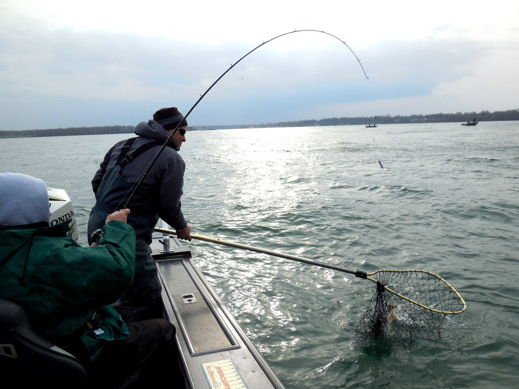 niagara river devils hole fishing