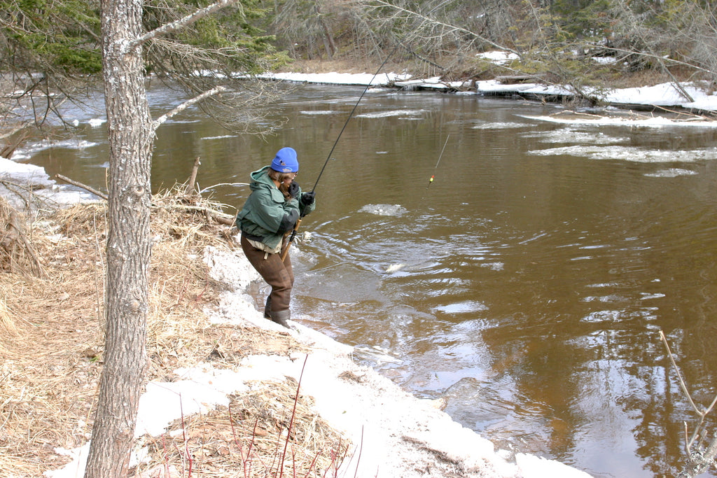 steelhead fishing great lakes