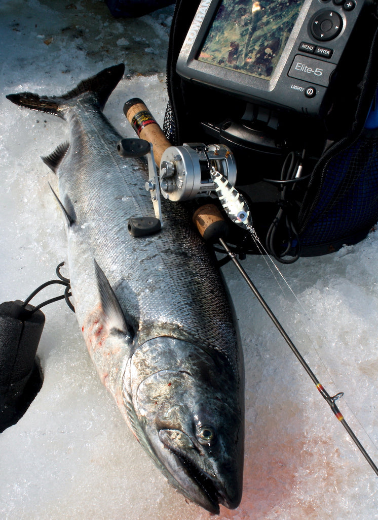 chinook fishing ice great lakes