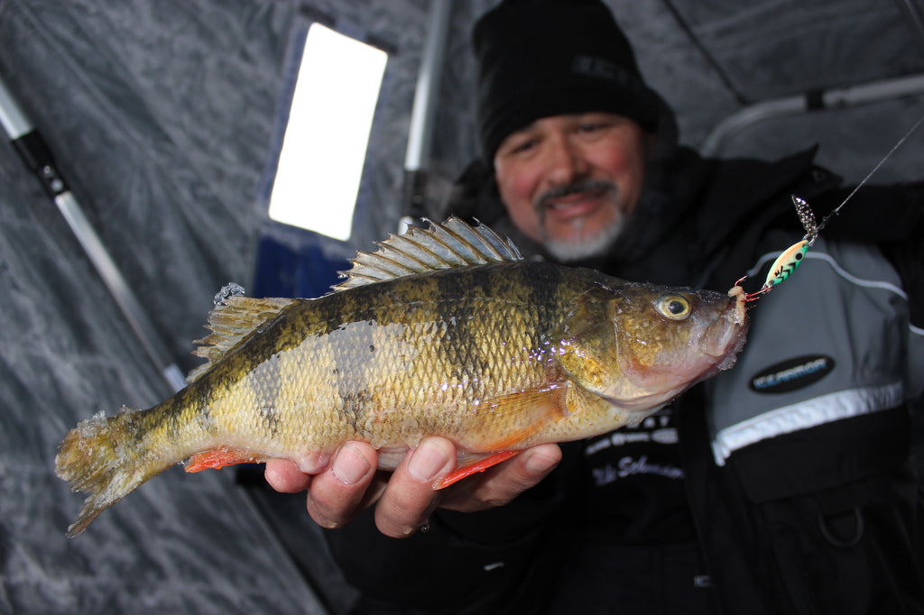 great lakes angler perch fishing spoons ice