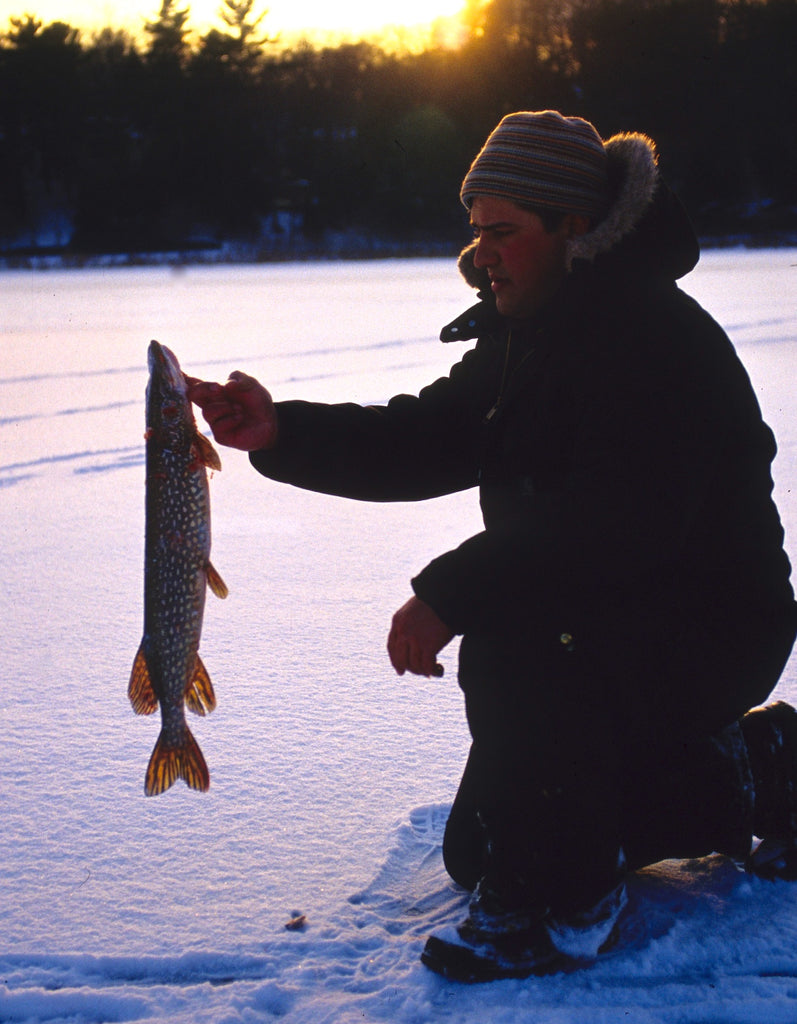 pike ice fishing michigan great lakes water lake pond