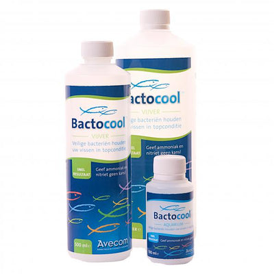 Bactocool levende bacteriecultuur