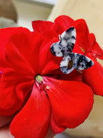 Load image into Gallery viewer, On a bright red geranium is a butterfly shaped ring. It is cast from recycled 3D prints in black, white and silver plant based filaments. They have a speckled look like granite.