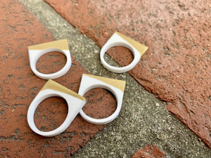 Dip In The Pool 3D Printed Rings