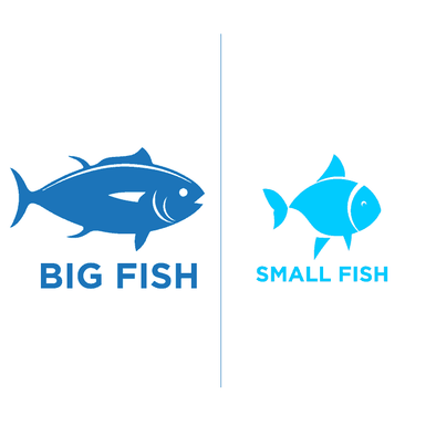 Groups Big Fish/Small Fish - humanKIND shop with a purpose