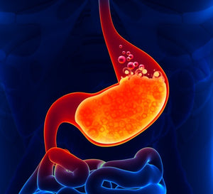 Probiotics Ease Indigestion in New Research Study