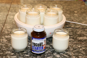 Make Your Own Easy & Delicious Yogurt with Natren's Yogurt Starter