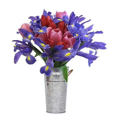 Stargazer Barn - Fresh Tulip And Iris Bouquet With Vase - Farm Direct