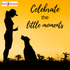 Celebrating the Little Moments