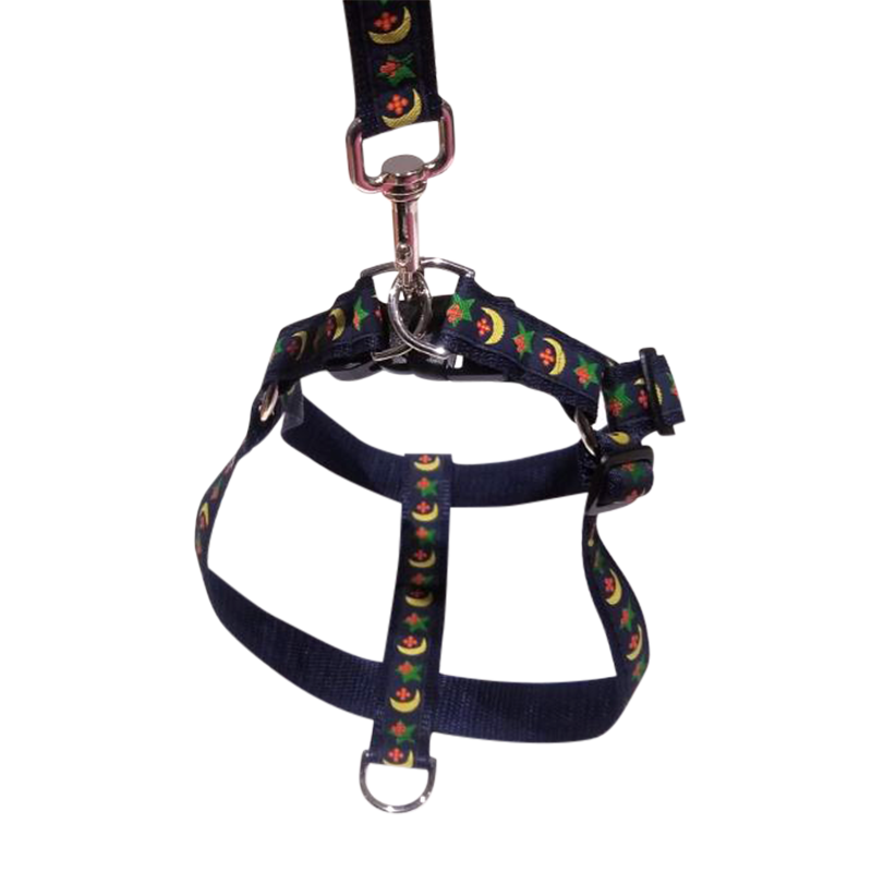 Harness & Matching Leash