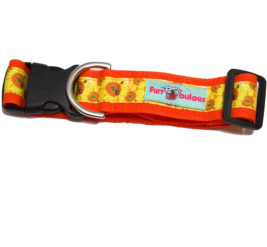 Sunflower Dog Collars - 1.5""