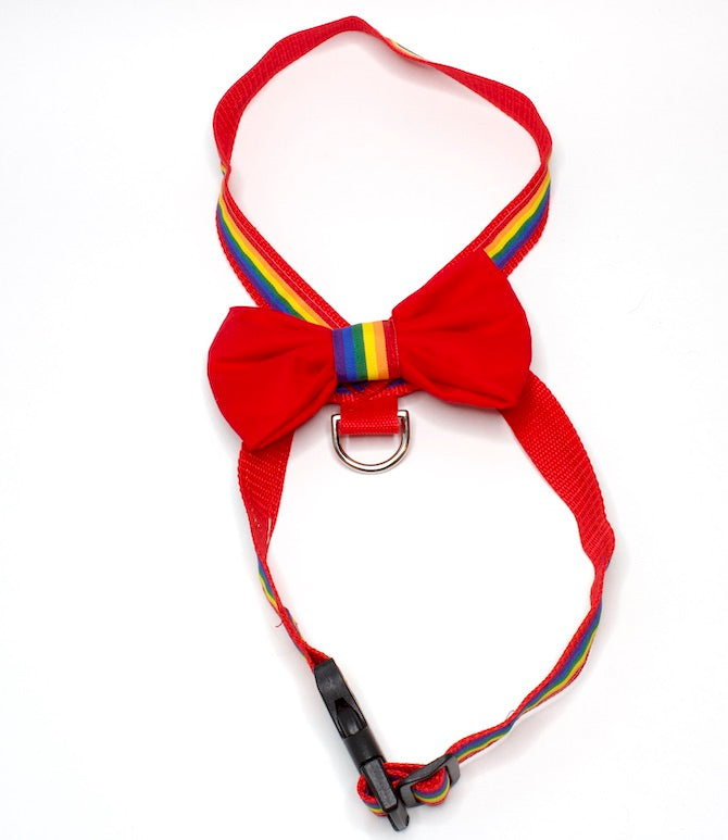 Harness with Bowtie