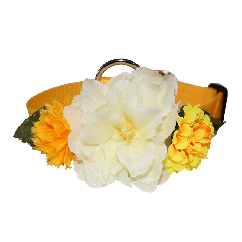 Spring Time Flower Collar - White/yellow flowers w/yellow collar