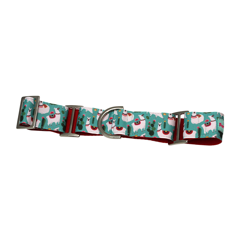 "Martingale 1.5"" dog Collar"