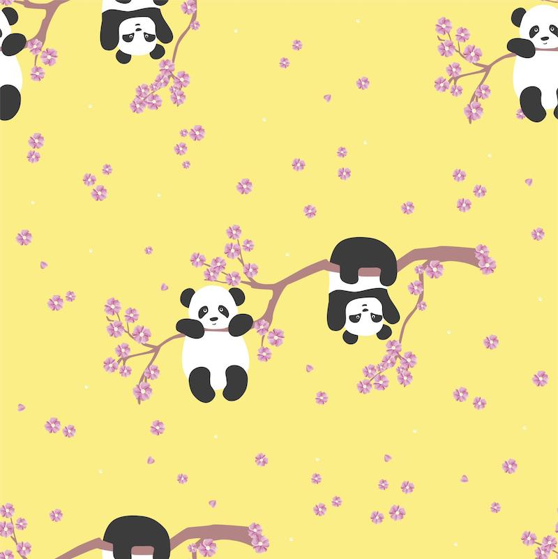 Cherry Blossoms & Pandas - With Black Neck/Hoodie and Trim
