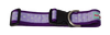 Purple Hearts Sport Collar 1.5""