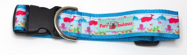 Under the Sea Sport Collar 1.5""