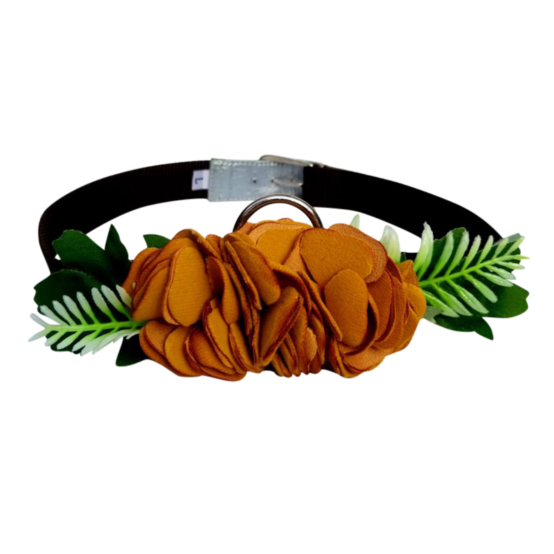 Single Flower Collar - Yellow flower w/brown collar
