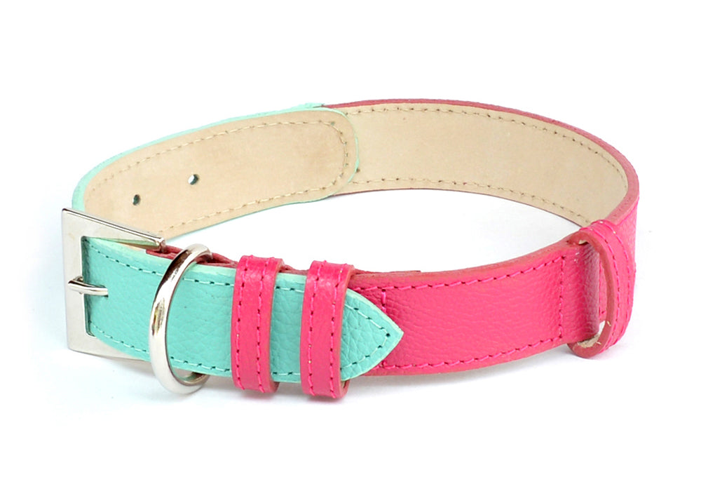Leather Colors Collar