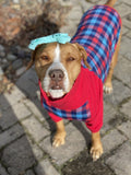 Red & Blue Plaid - PAWJama with Red Trim/Sleeves