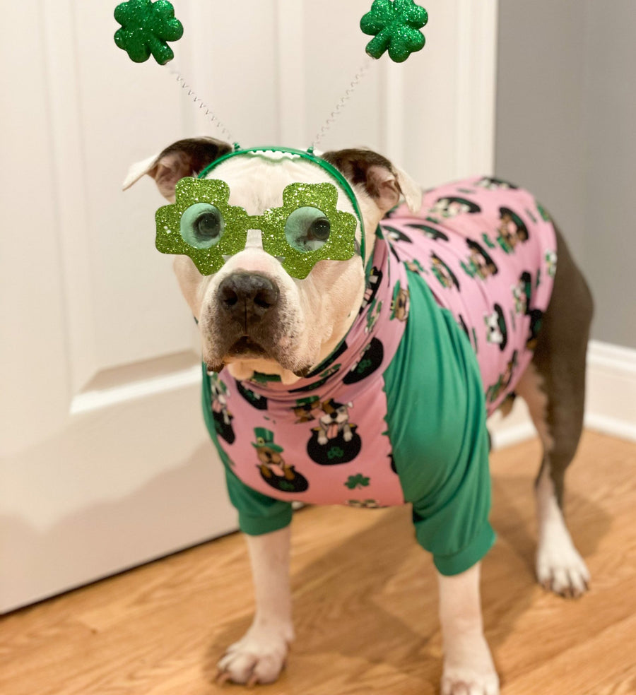 Pitties in Pot of Gold-  Pink PAWJama with Green Trim/Sleeves