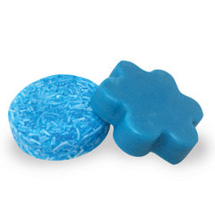 Shampoo & Conditioner Bars: Cactus & Sea Salt