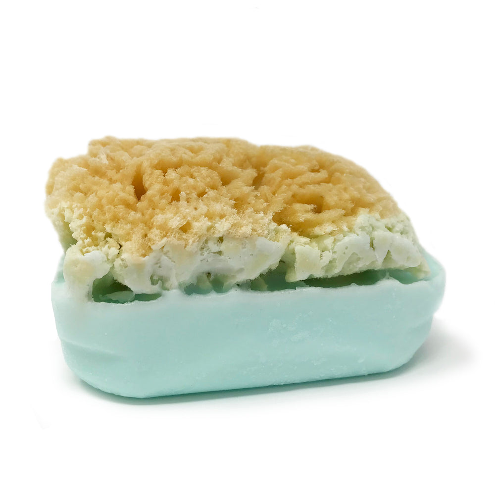 Goat's Milk Soap w/ Real Sea Sponge