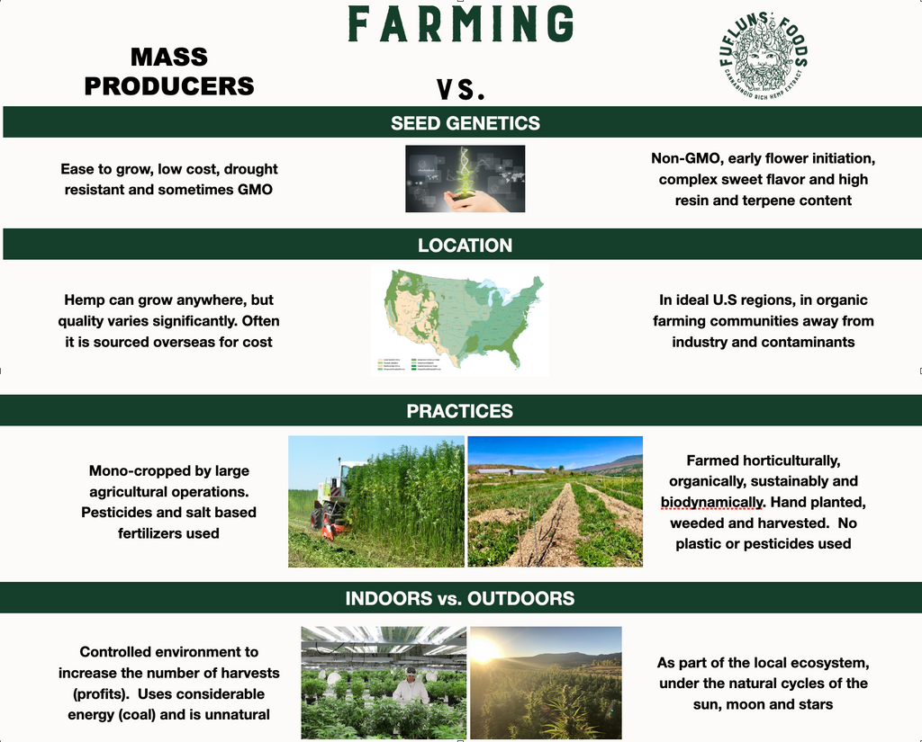 Hemp Farming - Mass Producer vs. Artisanal