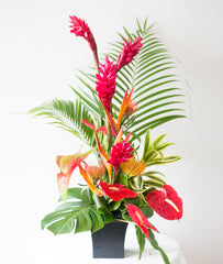 Seasonal Tropical Flower #1
