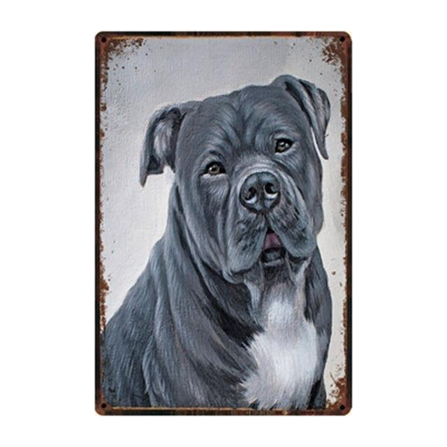 DOG BREED PORTRAITS