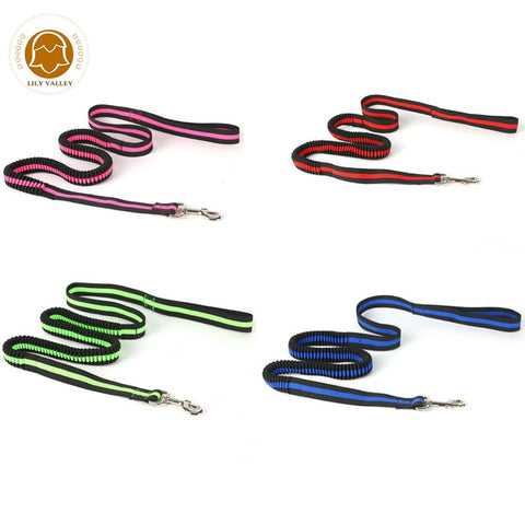Bungee leash for Labrador German shepherd or large dogs