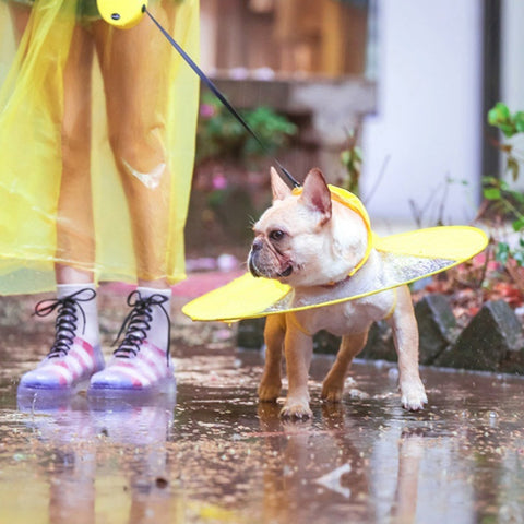Raincoats for Dogs Puppy Waterproof