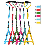 Walking Harness Leash for Chihuahua & Small Dogs