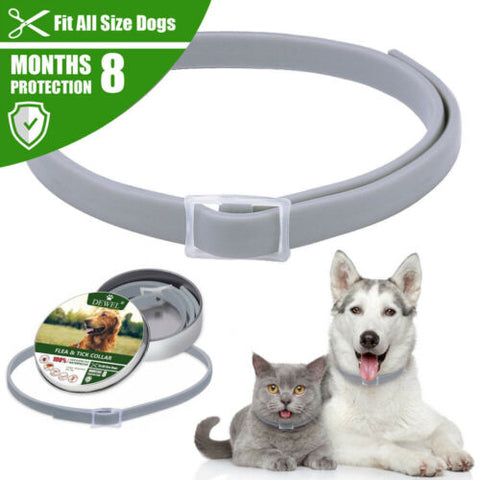 Cat Dog Collar  Anti-insect Flea Tick Mosquitoes Waterproof