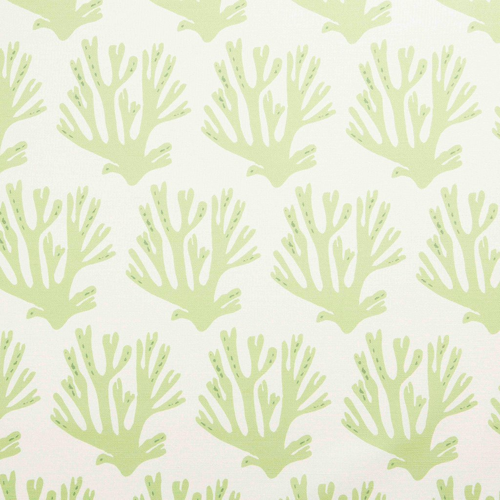 Fabric - Coral - Oyster - Green