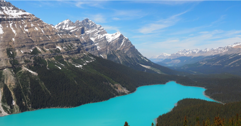 Peyto Lake in Banff Canada, Instagram-Worthy Glacial Lakes in Alberta