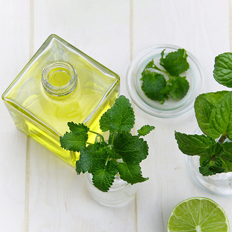 Peppermint Leaves to stimulate hair growth