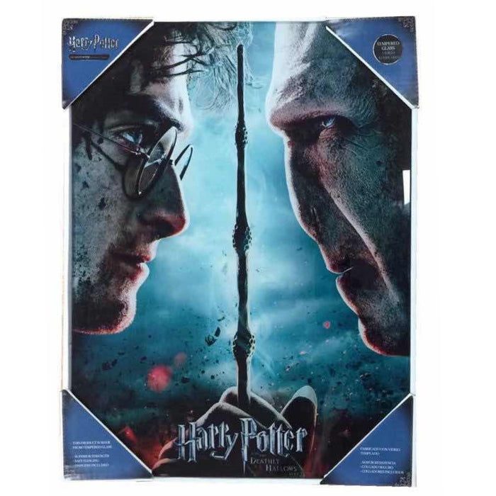 SD Toys Harry Potter vs Voldemort Glass poster