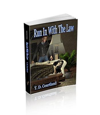 Run In With The Law (The Austin trilogy Book 1)